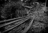Over a dozen or more petroleum pipelines pass directly in front of a house on the Via Auca, where oil exploration not only continues on indigenous land, it has expanded into Yasuni National Park.  South of Coca, Ecuador.  <br /> <br /> Via Auca is a road that extends south from the city of Coca.  Coca began as a solitary airstrip for a military outpost in the mid-1960's.  The Huaorani were referred to as the &quot;Aucas&quot; or &quot;savages&quot; by their indigenous neighbors, the Kichwa.  The Via Auca, which extends south from Coca opened up territory where the &quot;uncontacted&quot; lived.