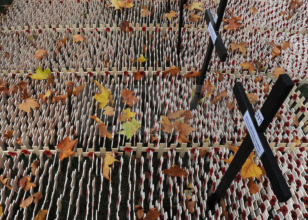 © Licensed to London News Pictures. 10/11/2011. London, UK. Leaves rest on crosses at the Field of Remembrance. HRH The duke of Edinburgh opens the annual Field of Remembrance at Westminster Abbey today 10 November. . Photo credit : Stephen Simpson/LNP