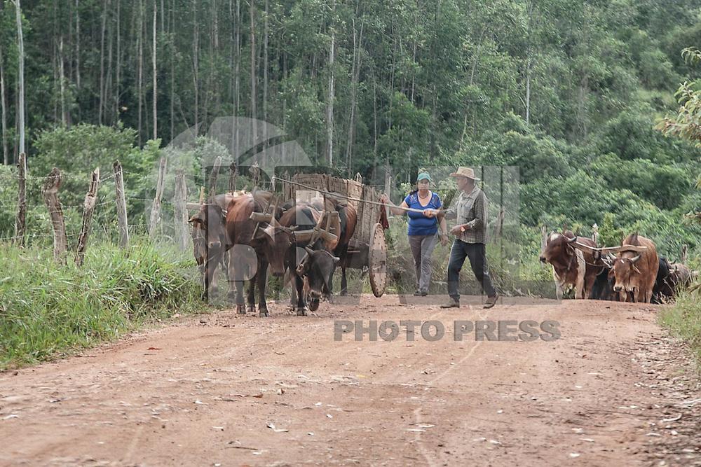 JACUI. MG. 28 - 02 - 2016 - Foi realizado mais um desfile de Carros de Bois organizado pela associação dos carreiros de carros de bois  de Jacui MG. neste domingo { 28 } Fotos: Renato Cunha / BRAZIL PHOTO PRESS.}