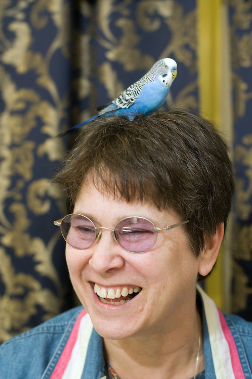 Sister Glynis Mary McManamon's six-year-old parakeet Jack, lights on her head after a flight around her gallery and studio, Shepherding Images, at 1910 Bardstown Rd., photographed Wednesday, Nov. 11, 2009 in Louisville, Ky. (Photo by Brian Bohannon)