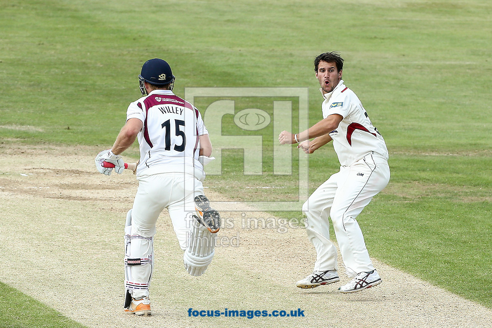 Lewis Gregory of Somerset County Cricket Club (right) turns to appeal for the dismissal of David Willey of Northamptonshire County Cricket Club (left) during the LV County Championship Div One match at the County Ground, Northampton<br /> Picture by Andy Kearns/Focus Images Ltd 0781 864 4264<br /> 15/07/2014