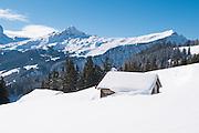 Sicht auf Lauberhorn und Männlichen von Winterwanderweg zwischen Busalp und Bort