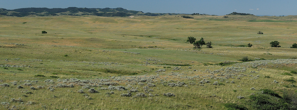 Panorama, Landscape near Lame Deer, Northern Cheyenne Indian Reservation,  Montana, USA