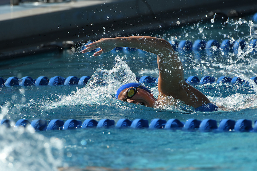 2017 Florida Gators Swimming @ All-Florida Invitational