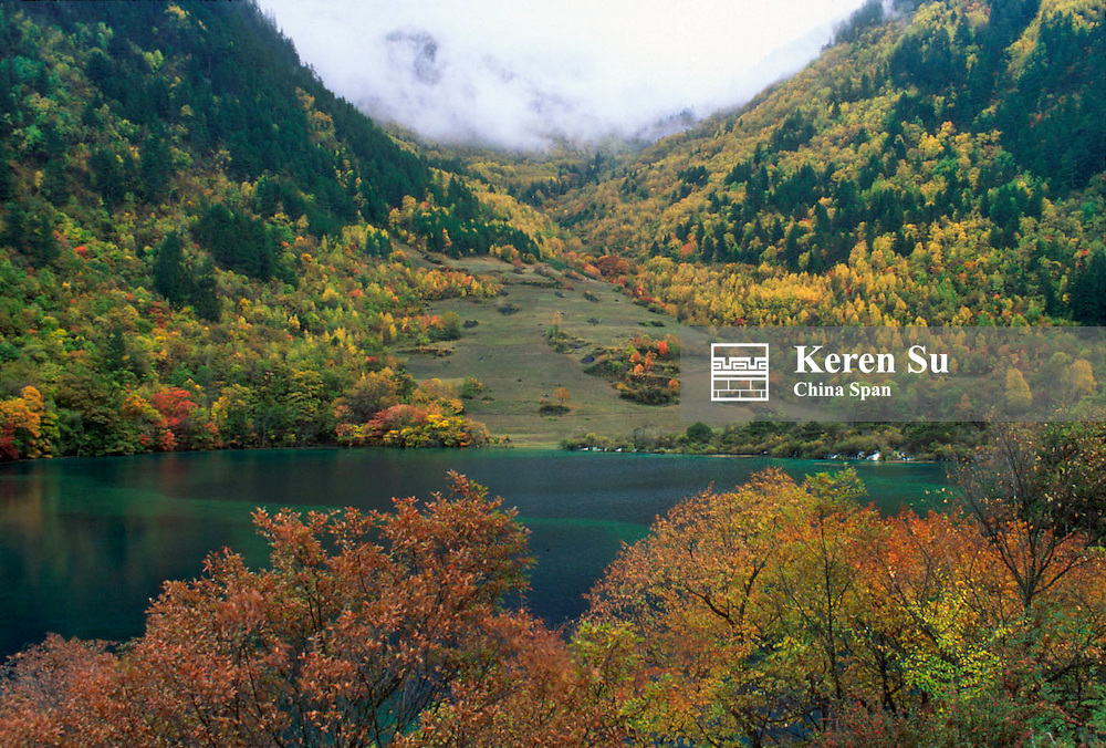 Colorful forests of autumn foliage and green lake, Nine Village Valley, Sichuan Province, China