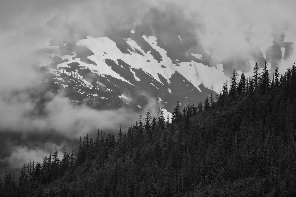 Remnants of snow in the coastal mountains of Southeast Alaska are obscurred by fog in the Tongass National Forest, part of the  Inside Passage. Summer. Evening.