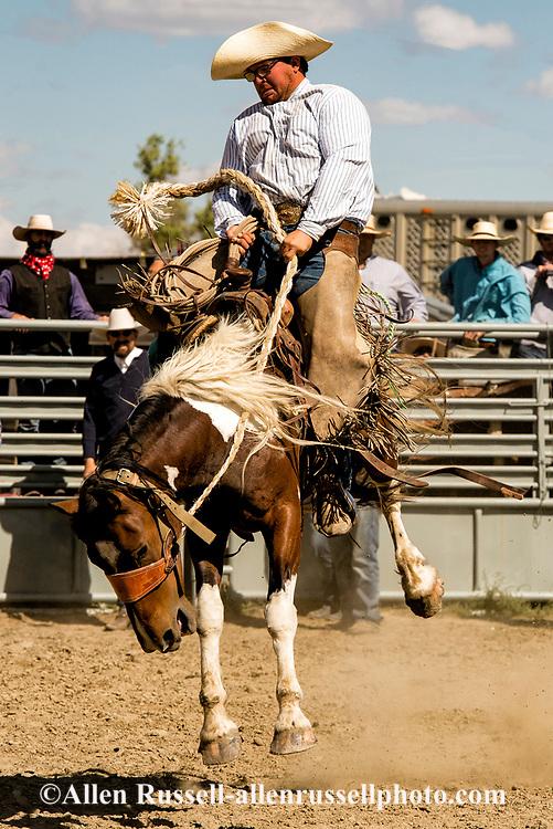 Ranch Rodeo, Bronc Riding, Ingomar, Montana