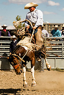 Ranch Rodeo, Bronc Riding, Ingomar, Montana