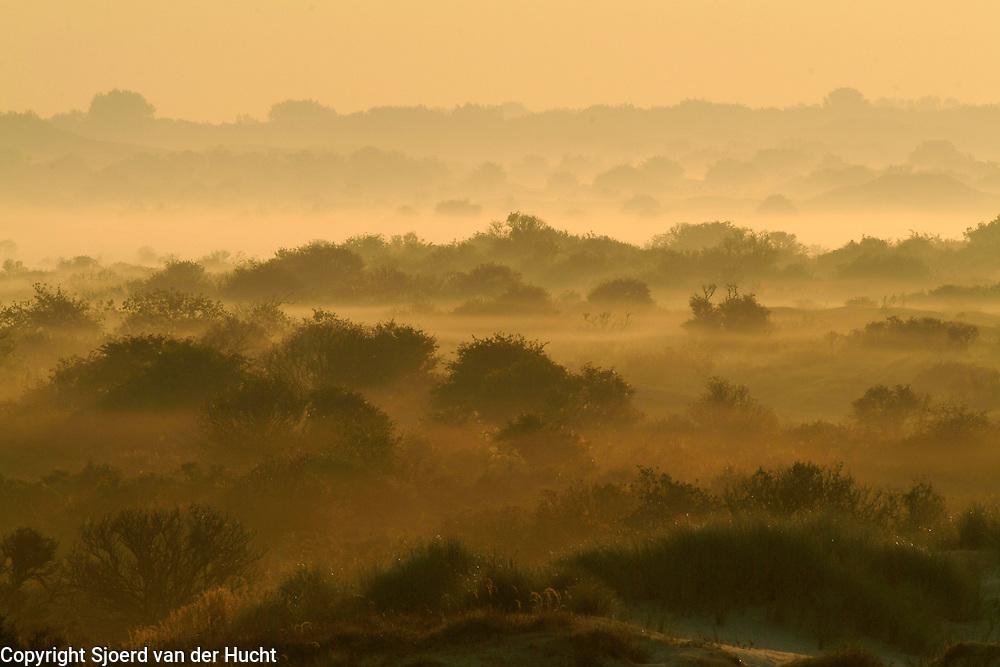Dunes near Burgh Haamstede, Zeeland, Netherlands.