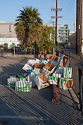 Boxes (Just Moved), Los Angeles, California, 2013