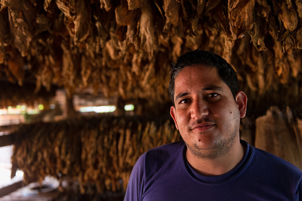 Portrait of Cuban tobacco farmer in his drying shed in Viñales