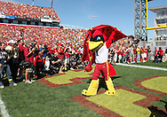 September 10, 2011: Iowa State mascot Cy takes the field before the start of the game between the Iowa Hawkeyes and the Iowa State Cyclones during the Iowa Corn Growers Cy-Hawk game at Jack Trice Stadium in Ames, Iowa on Saturday, September 10, 2011. Iowa State defeated Iowa 44-41 in 3OT.
