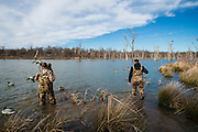 Duck hunters wade into the cold water to reposition decoys while hunting on a private lake in Shamrock, Oklahoma