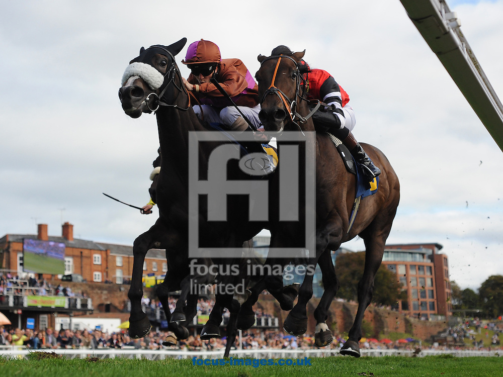 The Character and jockey Stephen Craine (r) win The Sportingbet Maiden Stakes from Bikini Island (David Probert) at Chester Racecourse , Chester<br /> Picture by Alan Wright/Focus Images Ltd 07733 196489<br /> 27/09/2014