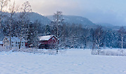 Norwegian mid-winter farm in Sande, Vestfold, Norway.