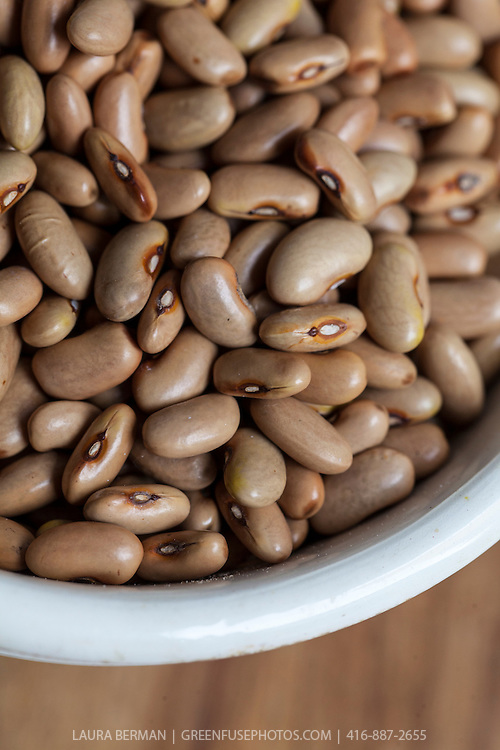 Dried heirloom 'Six Weeks' beans