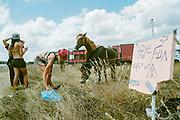 People with horses in field, BulgariaTek, Bulgaria, August 2011