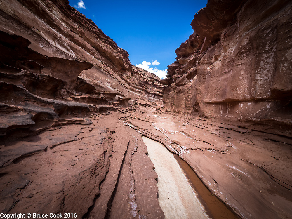 River bed in Capitol Reef National Park.
