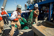 SAVANNAH, GA - OCTOBER 23, 2019: Scientists, shrimpers and others deploy shrimp nets to fish the commercial fishing grounds in Wassaw Sound to sample shrimp, water, sediments, plankton near Savannah, Georgia. (AJC Photo/Stephen B. Morton)