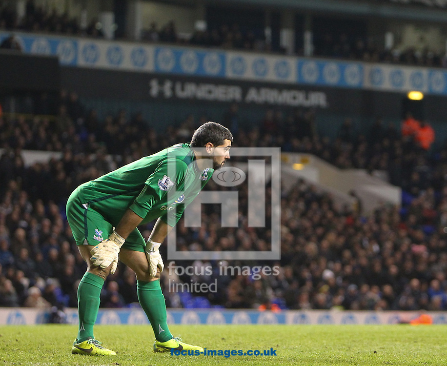 Picture by John Rainford/Focus Images Ltd +44 7506 538356<br /> 11/01/2014<br /> Julian Speroni of Crystal Palace during the Barclays Premier League match at White Hart Lane, London.
