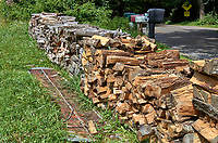 Wood pile drying at Arthur Morgan School near Burnsville, North Carolina. Image taken with a Leica T camera and 35 mm f/1.4 lens.