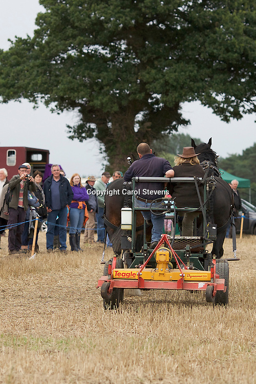 Working Horse Demonstrations National Horse Ploughing Competition and Demonstrations 2016