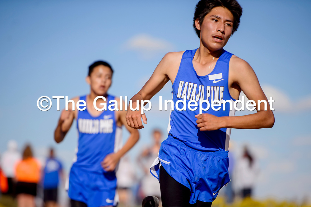 Navajo Pine Warrior Michael Marshall leads the race near the midway point during the boys varsity race of the Tohatchi Cross Country meet in Tohatchi Friday.