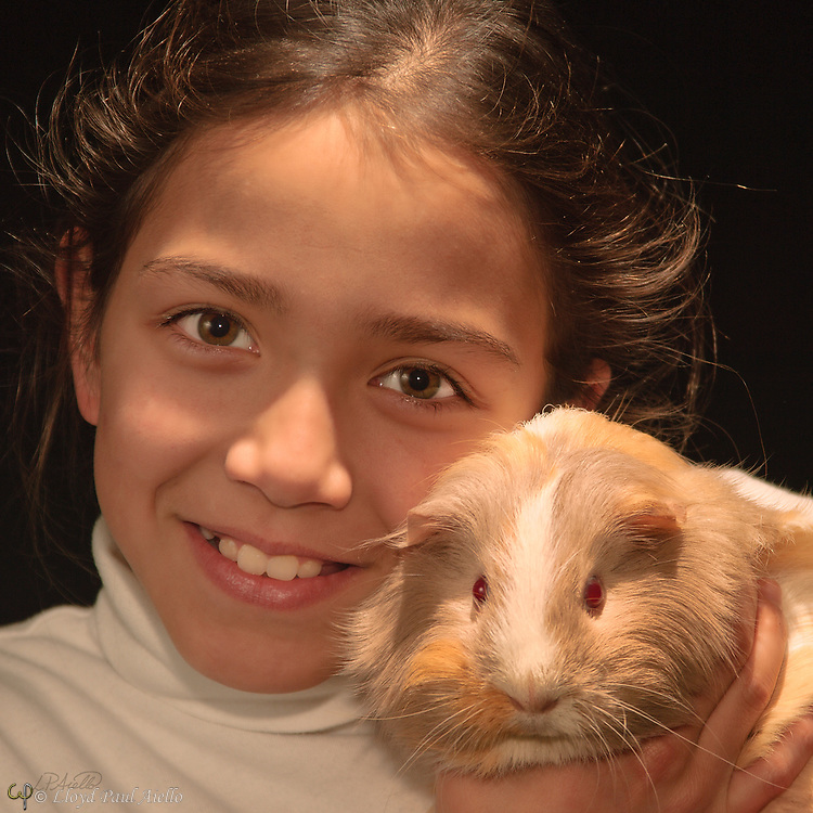 "Ashlyn holds ""Kisses"" a female Peruvian guinea pig (Cavia porcellus) she raised from a young pup."