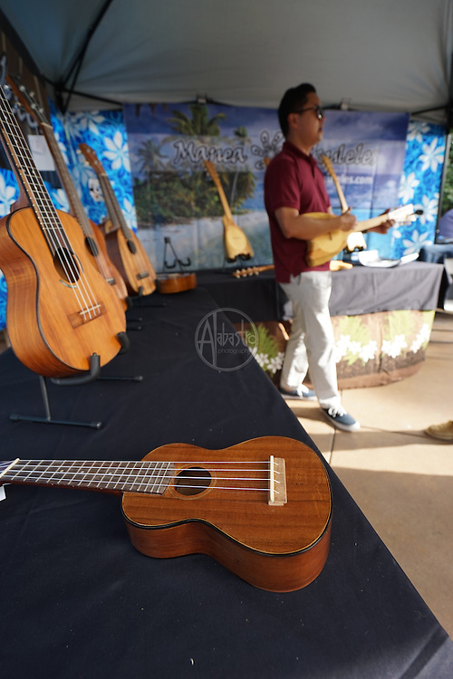 Island Marketplace at the Kala Koa So Cal Slack Key Festival 2015.