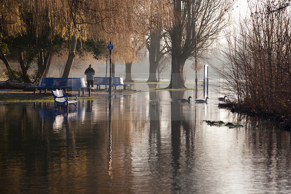 © Licensed to London News Pictures. 12/01/2014. Reading, Berkshire, UK. A man observes the flood water at Christchurch Meadows along the Thames Path in Reading, Berkshire. The River Thames has broken its banks causing extensive flooding. Photo credit : Rob Arnold/LNP
