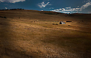 A deserted farm house sits in a field just outside Osoyoos, BC. (2011)