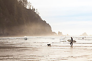 Short Sands Beach, Oswald West State Park, on the Oregon Coast