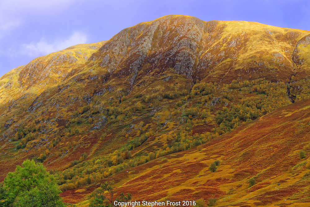 The Ben Nevis range from Glen Nevis showing autumnal colours. Ben Nevis (to  left) is the highest mountain in the British Isles. It is in the Lochaber area of the Scottish Highlands, close to the town of Fort William.