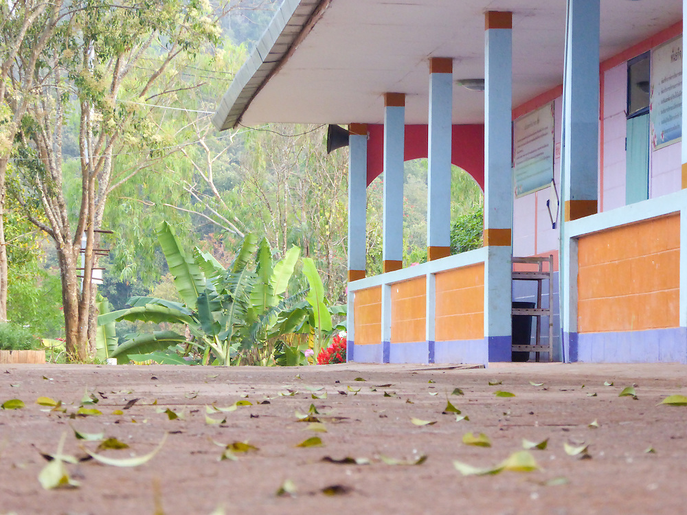 In this image Nukul has chosen to photograph at Thonnam, a school she attended when she was younger. In order to bring focus to the repetition and blur of the leaves she took the photo at a low angle.