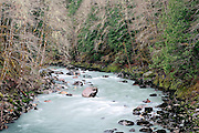 Raging Sauk River in Spring, North Cascades National Park, Washington State