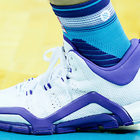 01 November 2015: Close view of Charlotte Hornets forward Nicolas Batum (5) Adidas shoes during the Atlanta Hawks 94-92 victory over the Charlotte Hornets, at the Time Warner Cable Arena, in Charlotte, North Carolina, USA.