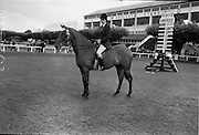 """08/08/1962<br /> 08/08/1962<br /> 08 August 1962 <br /> Dublin Horse show at the RDS, Ballsbridge, Dublin, Wednesday. Image shows """"Charm"""" a 4 year old brown mare owned by Mrs R. Carroll, South View, Killenaule, Co. Tipperary and shown by her daughter, 15 year old Mis Vera Carroll, won the Children's Champion Pony Award at the Dublin Hores show. Miss Carroll on """"Charm""""."""