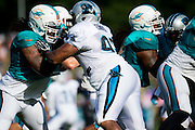 August 19, 2015 - Carolina Panthers Training Camp: Panthers practice drills against the Dolphins