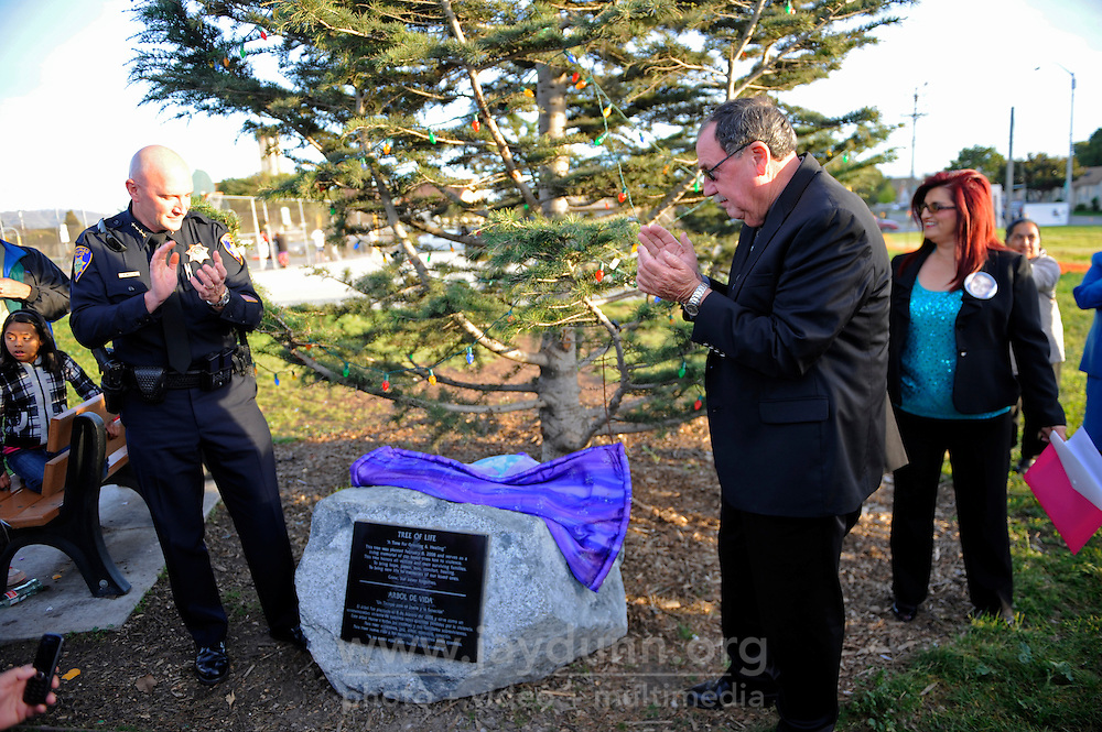 "From left, Salinas police chief Kelly McMillin, mayor-elect Joe Gunter, and founder Debbie Aguilar of the group ""A Time for Grieving and Healing"" unveil a memorial on Sunday to the numerous victims of violence in Monterey County since 1988. The boulder, at the base of the pine ""Tree of Life"" in Closter Park, carries a black plaque which declares it ""a living memorial to our loved ones lost to violence,"" one whose aim is ""to bring hope, peace, love, comfort, and healing."""