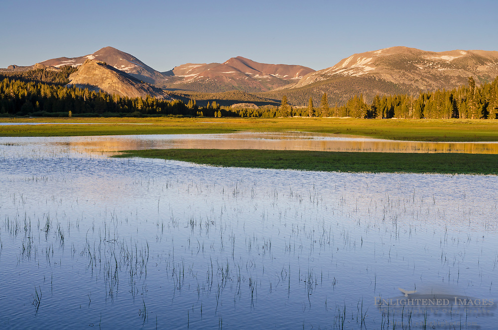 Mountains above the flooded Tuolumne Meadows, Yosemite National Park, California