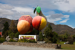 Sculpture of large pieces of fruit with a sign, Cromwell, South Island, New Zealand