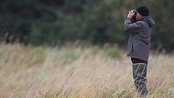 A tour guide scouts a field with binoculars for North American brown bear /  coastal grizzly bears (Ursus arctos horribilis), Lake Clark National Park, Alaska, United States of America