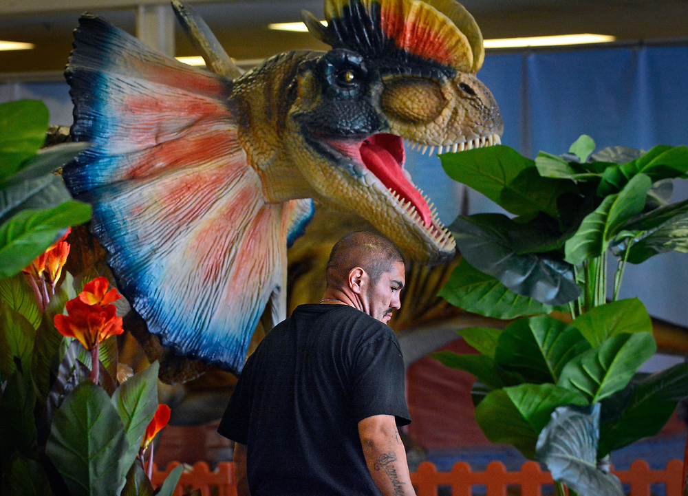 jt033017a/a sec/jim thompson/  Gilbert Gonzales sets up some of the plants for the Jurassic Tour at the Expo NM for this weekends show. Tuesday March 28, 2017. (Jim Thompson/Albuquerque Journal)