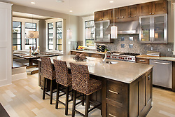 6039 27th Street North, Arlington, VA builder JK developement Kitchen