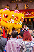 31 JANUARY 2014 - BANGKOK, THAILAND:   A Chinese Lion dance troupe on Yaowarat Road during Lunar New Year festivities, also know as Tet and Chinese New Year, in Bangkok. This year is the Year of the Horse. The Lion Dance scares away evil spirits and brings prosperity and luck. Ethnic Chinese make up about 14% of Thailand and Chinese holidays are widely celebrated in Thailand.     PHOTO BY JACK KURTZ