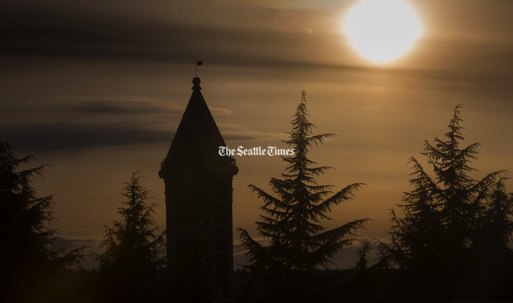 Smith Tower is surrounded by trees as the sun goes down over Seattle.  Shot from Harborview Medical Center. (Ellen M. Banner / The Seattle Times)