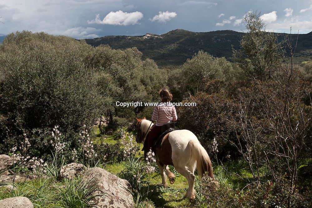Corsica. France. Horse riding  around Sheepfold in San Pultru,  Corsica  France   / bergerie a San Pultru  sud corse. Randonnee a cheval tourisme equestre;  Corse  France