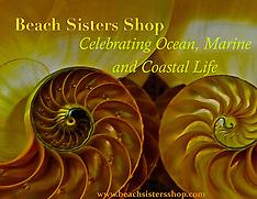 Beach Sister Shop Clients