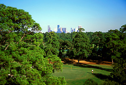 Stock photo of a treetop view of a hole on Houston's beautiful Hermann Park golf course