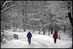 A cyclist and walkers out in the deep  snow in Epping Forest, Essex, after a heavy Snowfall over the last 2 days, Sunday January 20, 2013. Photo: Andrew Parsons / i-Images